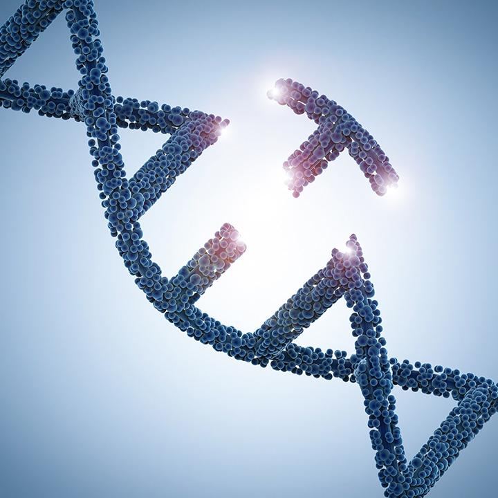 血友病(X連鎖性劣性遺伝)